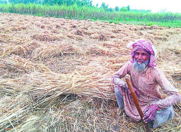 farmers in bijnor